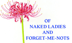 Of Naked Ladies and Forget-Me-Nots by Allan Armitage