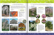 LCN Selections New Plant Catalog