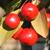 American Salute™ Crabapple fruit