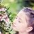 Marleys Pink Parasol® Japanese Snowbell flowers