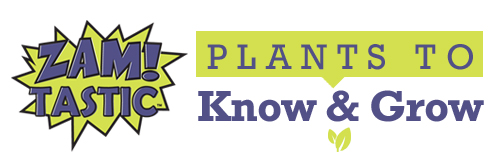 Plants to Know & Grow