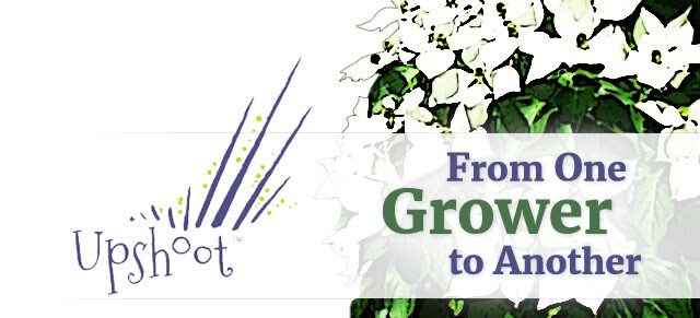 Grower enews header