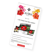 Hollywood Hibiscus newsletter